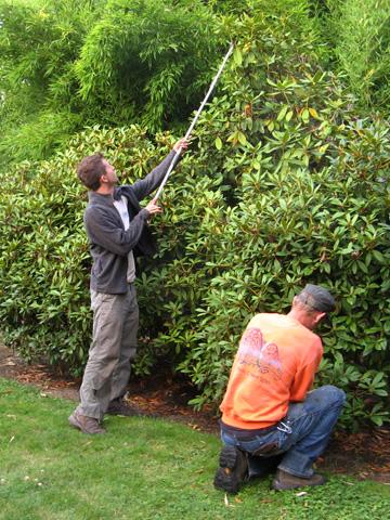 Landcrafters Inc Full Service Landscape Maintenance In